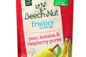 .55 For Beech-Nut Pouches Baby Food At Walmart