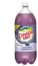 canada dry blackberry