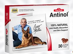 FREE Antinol for Dogs