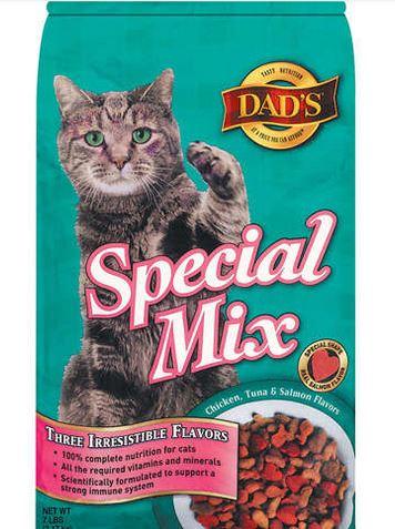 dads cat food