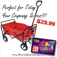 Tote Your Couponing Scores for Less Than $30!