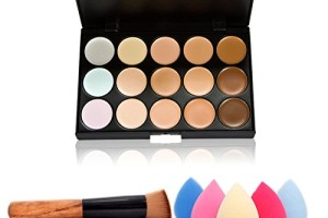 Contour Palette, Brush & Sponge—$4.34 SHIPPED!