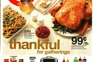 Target Ad Scan 11/13 – 11/19