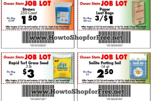 picture regarding Ocean State Job Lot Coupons Printable named ocean country activity good deal discount codes How in direction of Retail outlet For Cost-free with