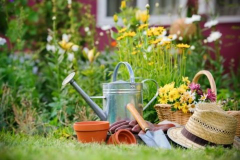 gardening+divinehomecare