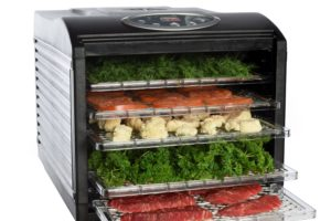 WOW, Countertop Food Dehydrator SAVE $50!
