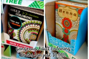 Relax & Unwind for $1! Adult Coloring Books @ Dollar Tree