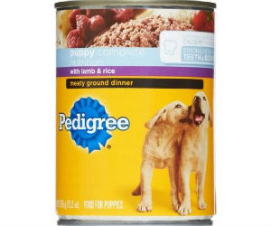 Free Can Pedigree How To Shop For Free With Kathy Spencer