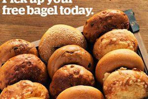 Select Panera Members ~ Free Bagel Everyday in October