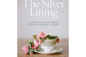 Free Copy of The Silver Lining by Hollye Jacobs