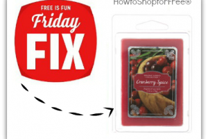 Kmart Friday Fix ~ Free 6 Pack of Wax Melts!