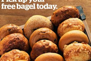 Possible FREE Bagel Daily for Panera Members!