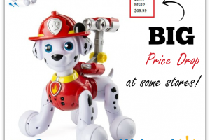 Paw Patrol Zoomer Marshall NOW as low as $5 ~ Walmart Price Drop!