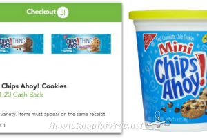 40¢ Chips Ahoy! Go-Paks @ Dollar Tree ~ No Coupon Necessary!