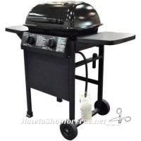 Grill Glitch?! 2-Burner Gas Grill for A BUCK!!??!