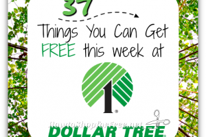 37 FREEBIES at Dollar Tree ~ June 6-10