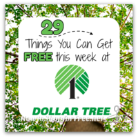 29 FREEBIES at Dollar Tree this week! (July 23-29)