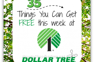 35 Things You Can Get FREE at Dollar Tree ~through 5/3