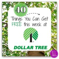 40 FREEBIES at Dollar Tree this week!!