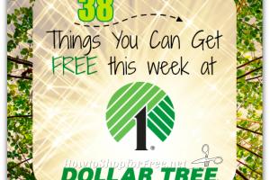 38 Dollar Tree FREEBIES ~ May 21-27