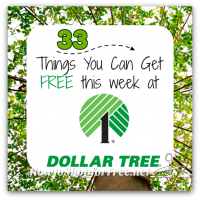 33 Freebies at Dollar Tree ~ June 25-July 1