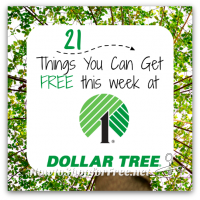 21 Things You Can Score FREE at Dollar Tree! (Feb. 16 – 22)