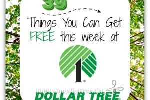 39 FREEBIES at Dollar Tree ~ Includes Money Makers!!