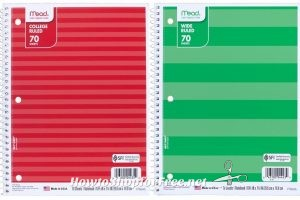 WOWZER 38¢ Notebook Clearance at Target.com ~Come See!!!!