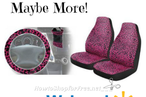 4pc Cheeta Girl Car Kit $2.50!!! ~90% OFF! (Possibly LOWER!)