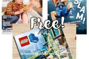 3 FREE Family-Friendly Magazines, Hurry.. These are Popular!