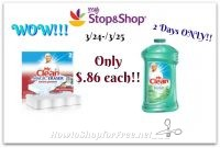 WOW!! 2 Day Sale!! .86¢ Mr. Clean Cleaning Products at Stop & Shop! (3/24-3/25)