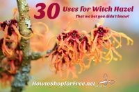 30 Uses for Witch Hazel that We Bet You Didn't Know!