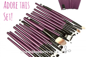 20pc. Makeup Brush Set $10.99 ~The Set I Own & Love!