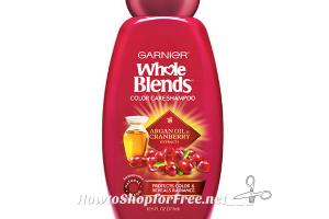 $1.47 Garnier Whole Blends at Walmart