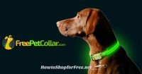 FREE L.E.D. Dog Collar, Just Pay Shipping