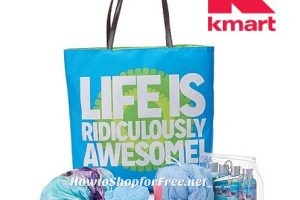 $10 Spring Beauty Bag, in-store @ Kmart (or $9.85 wyb Online!)