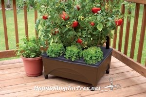 Raised Garden Bed UNDER $20 from Lowe's!!