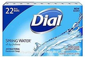 Dial Bar Soap 34¢ per bar @ Ocean State Job Lot!!