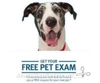 Banfield Veterinary Hospital – Free Pet Exam