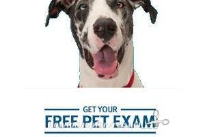 Banfield Veterinary Hospital – Free Pet Exam