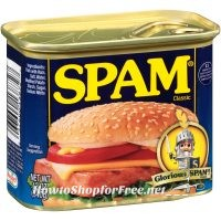 SPAM $2.14 at Walmart with New IP! ~Great Camping Food!