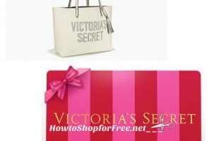 Buy $85 in VS Gift Cards, Get a Fab Tote FREE!