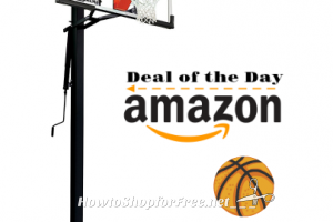 Save $250 on Silverback 54″ In-Ground Basketball Hoops