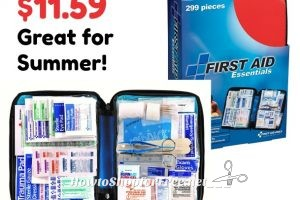 299pc. First Aid Kit w/ Case 57% OFF ~Stellar for Summer!