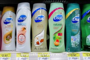 $1.97 Dial Body Wash at Walmart ~Print Now!
