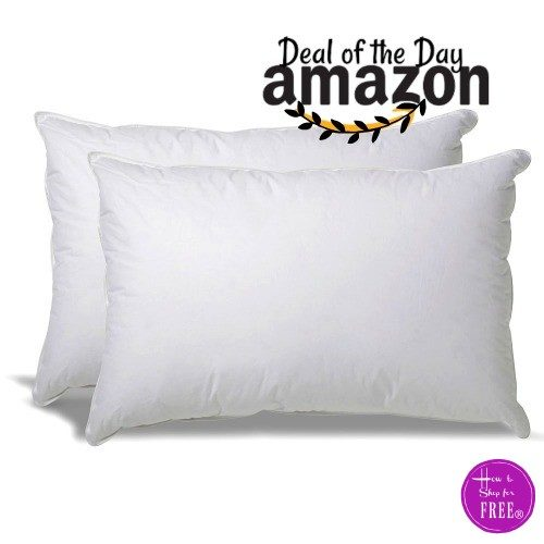 Deal of the Day~ Set of 2 Down Alternative Pillows On Sale!