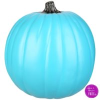 Support the #TealPumpkinProject ~50% OFF, Today Only!