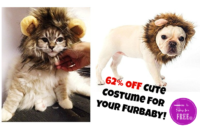 Turn Your Furbaby into a LION for Halloween! SO CUTE!