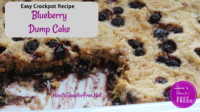 Crockpot Blueberry Dump Cake Recipe
