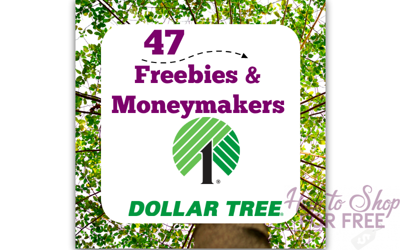 47 Free/MM Deals~ Shop for FREE at Dollar Tree!